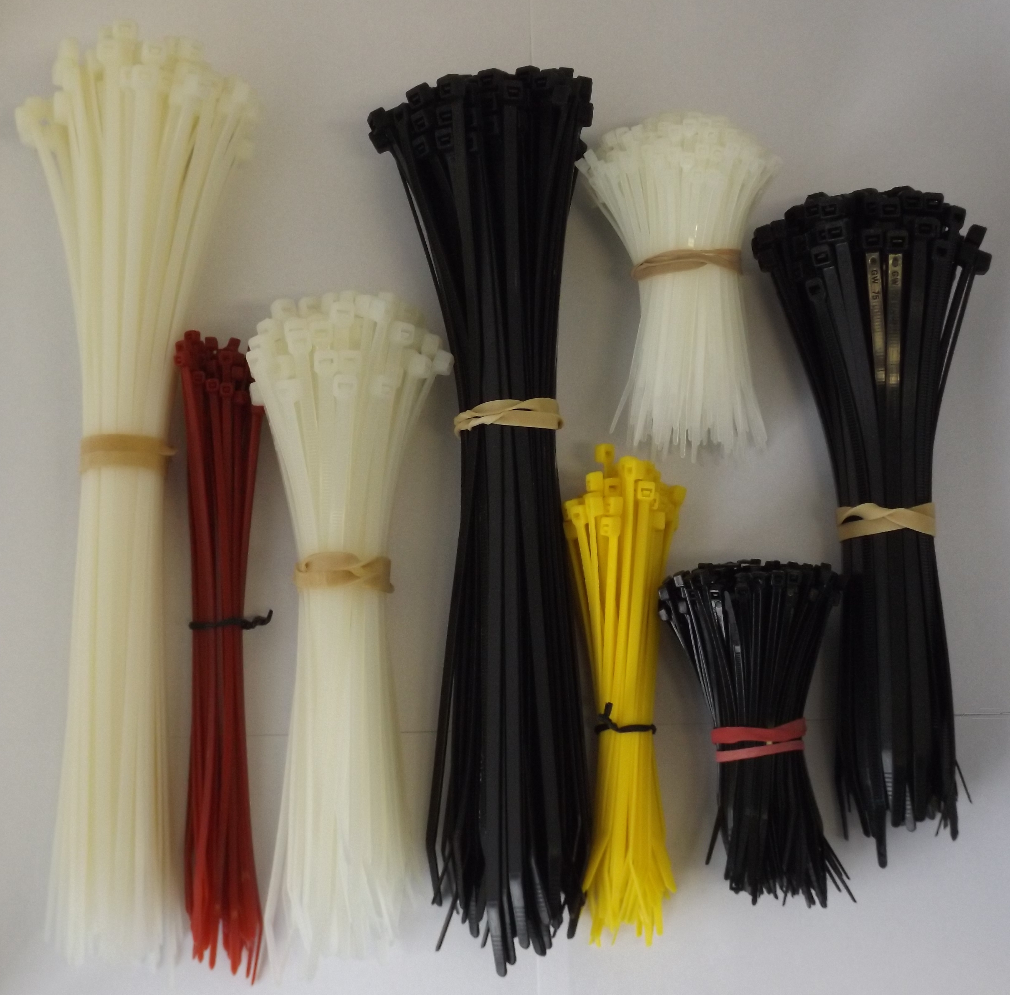 Assorted Cable Ties (AB.1000)