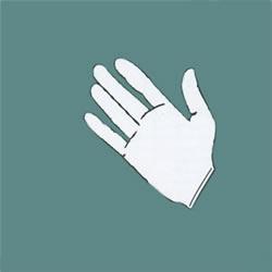 Powder Free Nitrile Examination Gloves-Large